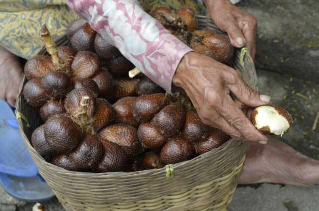 Snake Fruit aka Salak – Daily Food Photo