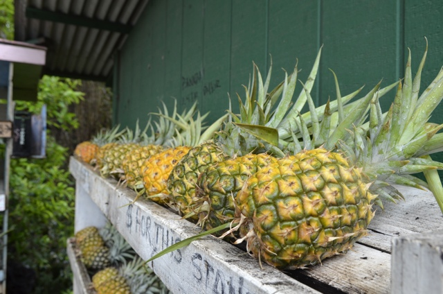 Fresh Maui Pineapple by the side of the road