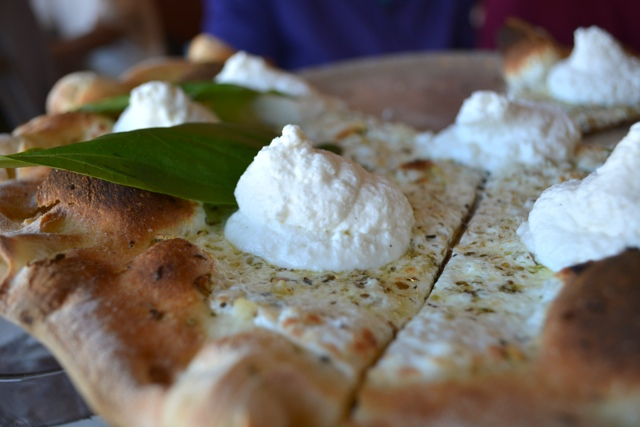 white pizza with whipped ricotta at coal fire pizza close up - Chicago Pizza Tours aka 3ish Hours of Heaven