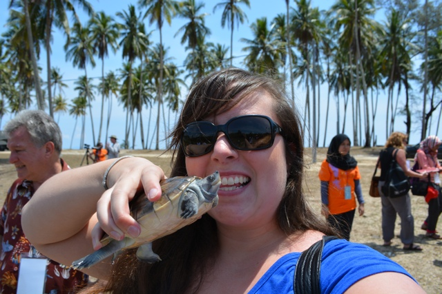 releasing terrapins in terengganu, Malaysia - Learning How to Squid Jig in Malaysia