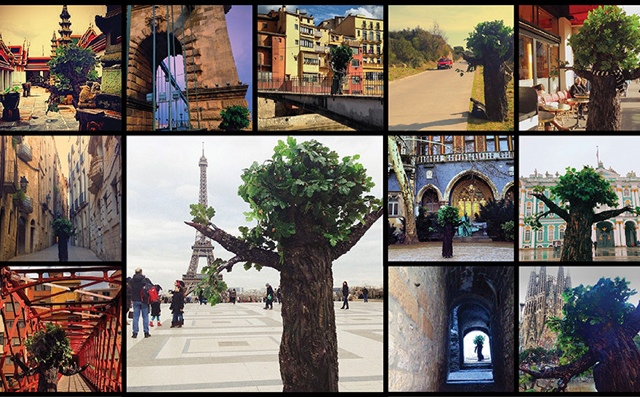 You Are Not a Tree… So Travel #video