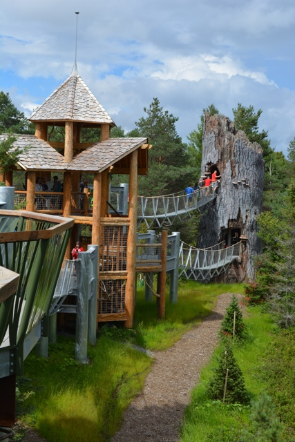 A view of the wild walk at the wild center in Tupper Lake in the Adirondacks - Adirondack Facts - Things to know before you go