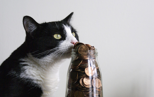 travel money saving jar - photo by flickr user shiny things - tips for saving money to travel