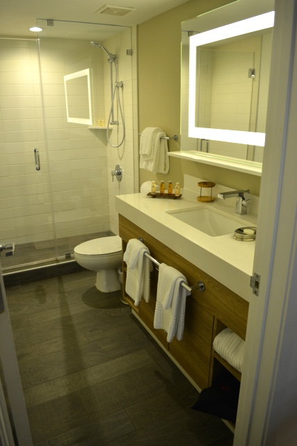 modern, clean and sleek bathroom, stand up shower, toothbrush holder - Amara Cay Resort Review in the Florida Keys