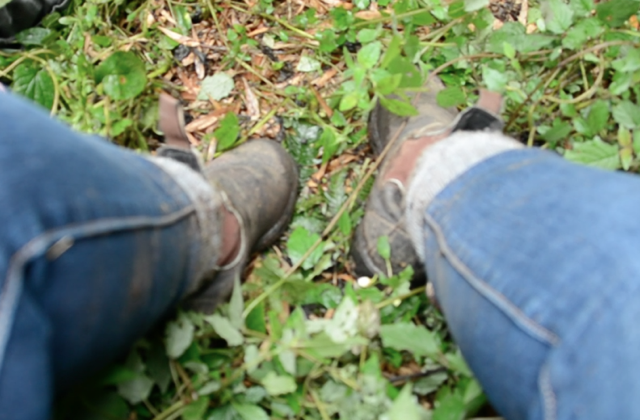 muddy blundestone boots not recommended for trekking to see gorillas - Trekking to see Wild Mountain Gorillas in Rwanda
