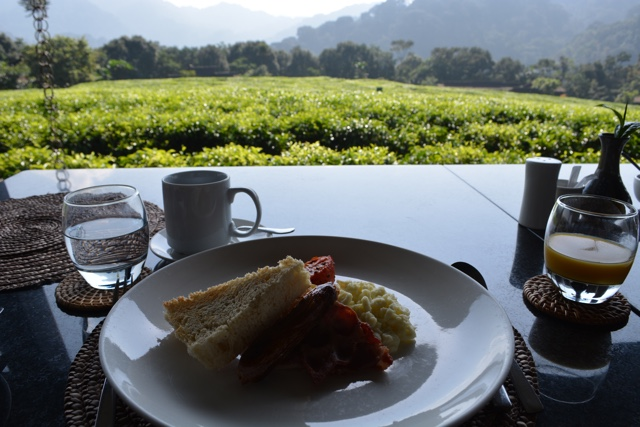 breakfast view - Nyungwe Forest Lodge, Rwanda Review