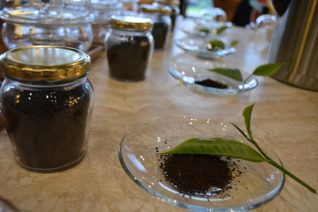 learning about the teas from the Gisakuru tea plantation - Nyungwe Forest Lodge, Rwanda Review