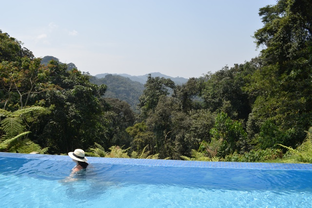 the infinity pool over looking the rainforest - Nyungwe Forest Lodge, Rwanda Review