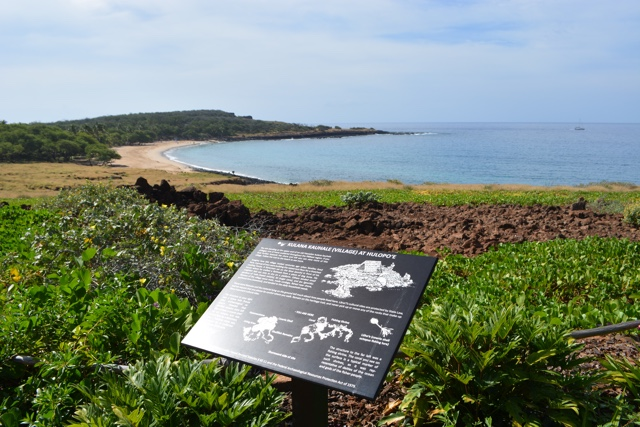 a view of Hulopoe Bay from the hotel - Four Seasons Resort Lanai in Hawaii Review