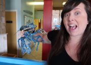 Cailin holding a bright blue lobster at Captain Kat's Lobster Shack