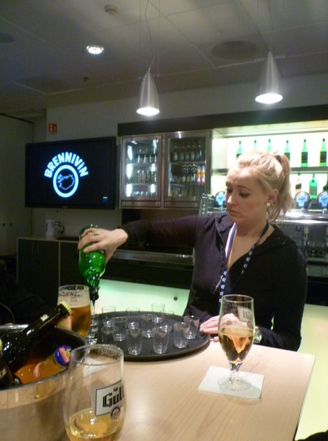 Taste the Saga Brewery Tour at Olgerdin Brewery in Iceland - How to Get Drunk in Iceland