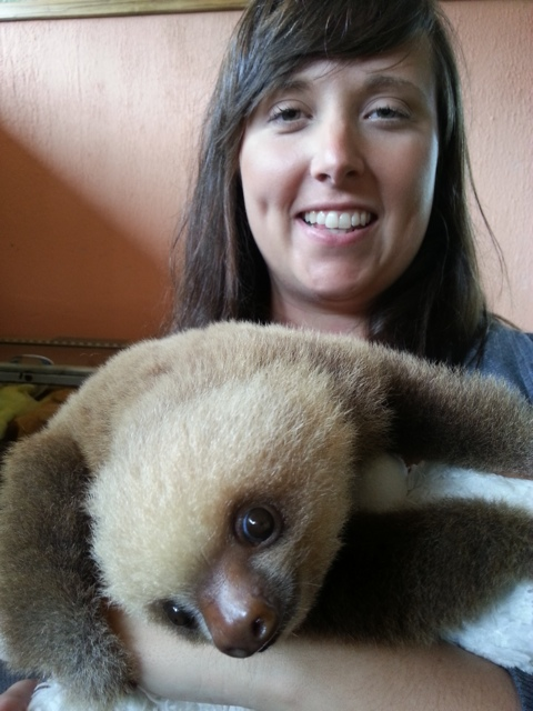 cailin sloth 04