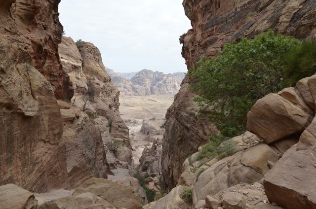 petra day 8