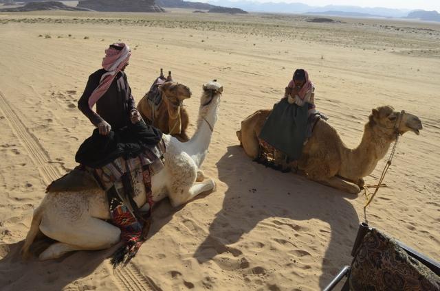 Bedouin camel owners