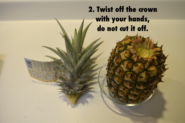 How to eat a pineapple step 2