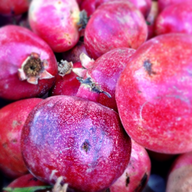 Large pomegranates in Israel