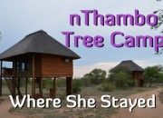 nthambo tree camp on Where She Stayed