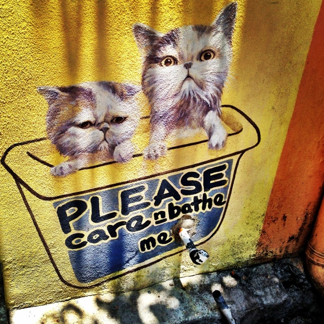 please care and bathe me 101 lost kittens art penang malaysia - Malaysia As Seen Through Instagram Photos