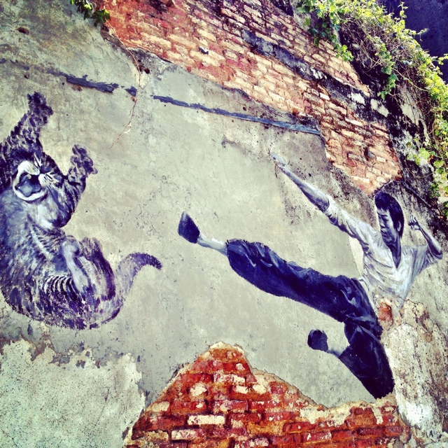 the real bruce lee would never do this 101 lost kittens project art penang malasyai