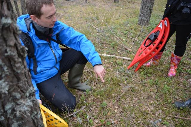 Urmas 360 Adventures bogshoeing guide - A Bog Walking Adventure in Estonia