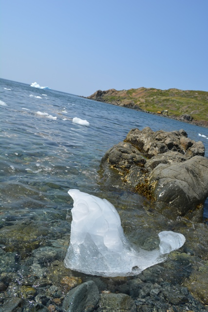 a bergy bit of an iceberg on the shore in Twillingate, Newfoundland - Seeing Icebergs in Newfoundland