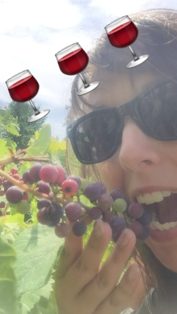 Adirondack Coast Wine Trail snapchats - Exploring the Adirondacks in New York State