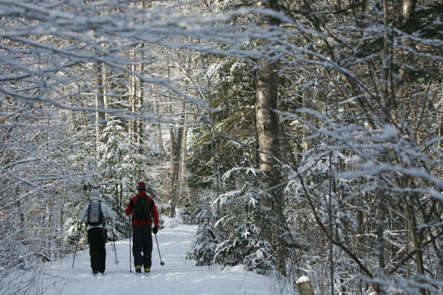 cross country skiing in Lake Placid - Kristin Strack - My Perfect Day in Lake Placid, NY