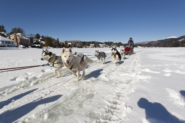 Winter in Lake Placid - dog sledding - My Perfect Day in Lake Placid, NY