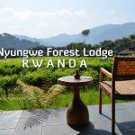 Nyungwe Forest Lodge, Rwanda Review
