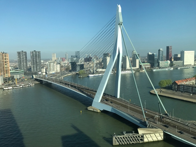 the stunning view of the Erasmusburg bridge in Rotterdam from the nhow hotel - First-Timers Guide for Visiting Rotterdam