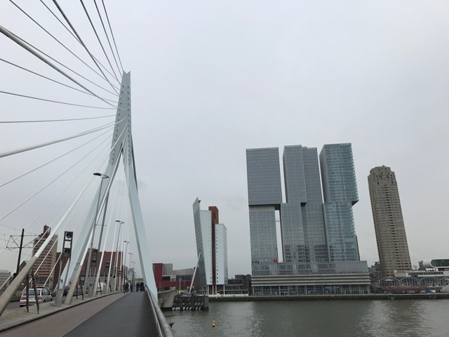 erasmusbrug bridge and nhow hotel rotterdam in de rotterdam building - First-Timers Guide for Visiting Rotterdam