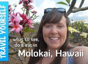 molokai highlights - Best Tips for Visiting Molokai, Hawaii