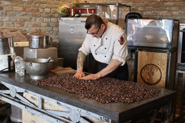 the chocolateir at chocolate brothers combs through the fermented cacao beans choosing the best