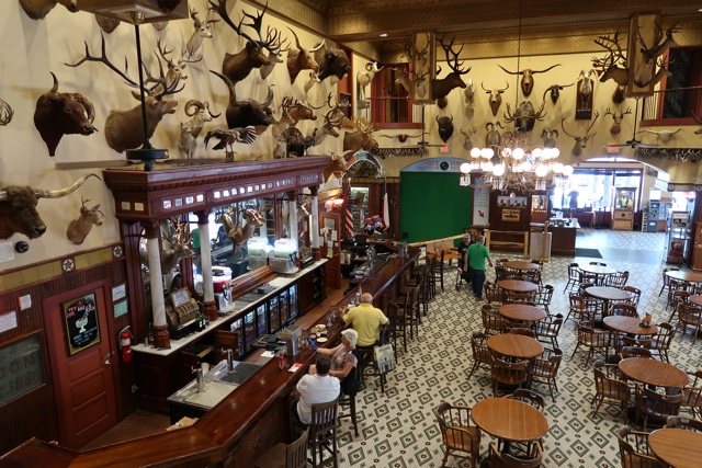 buckhorn saloon pub - Things to do in San Antonio Today
