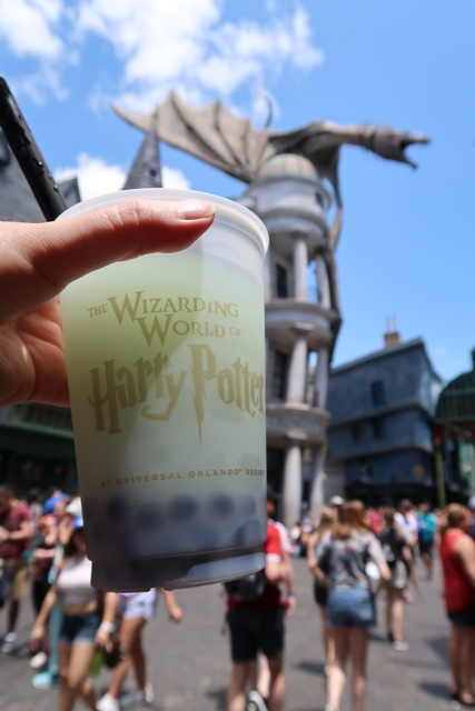 Fishy Green Ale at Universal Studios Orlando Wizarding World of Harry Potter