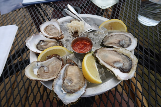 half dozen shucked oysters at the wheelhouse georgetown restaurant